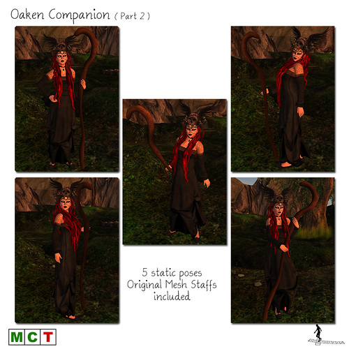 Oaken Companion (Part 2)