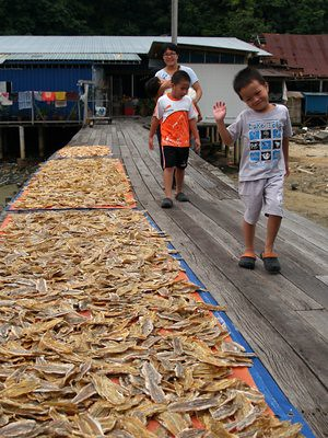20140117_pangkor_driedfish