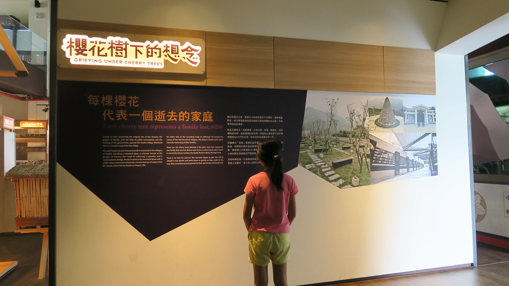 高雄甲仙小林平埔文物館 (20)
