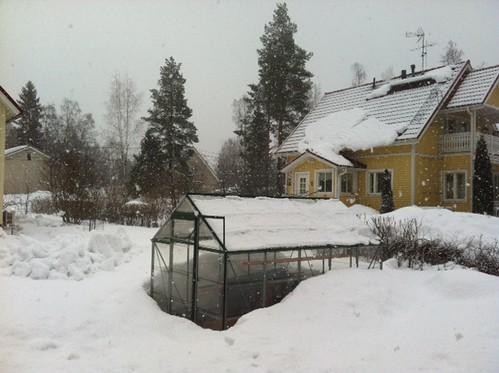 Aga meil sajab lund.... by elviina