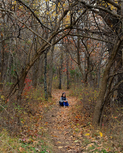 Picture of girl sitting in the middle of Sac River Trail with fall colors and fallen leaves.