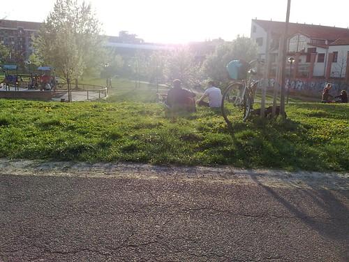 La deferenza tra asfalto e parco by durishti