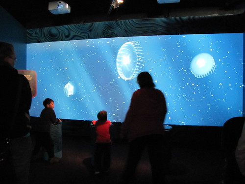 Interactive display: Jellies keep the beat