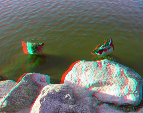3Dv2.0FieldTest-ANAGLYPH 019