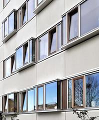 EAST FACADE. renovation of gyldenrisparken social housing, copenhagen. vandkunsten/witraz/wissenberg 2005-2012