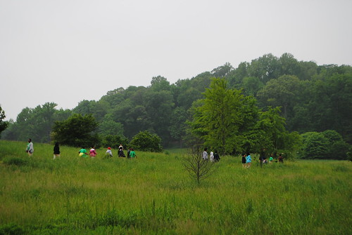 US Arboretum