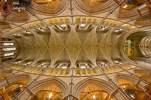 London Cathedral Look Up by david gutierrez [ www.davidgutierrez.co.uk ]