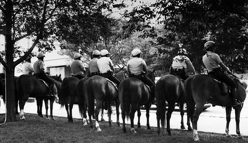 Chicago Mounted Police