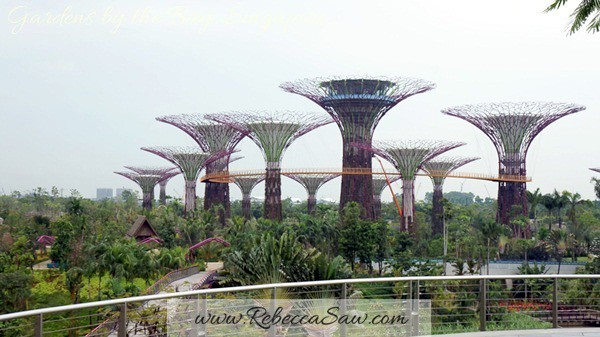 gardens by the bay, singapore (19)