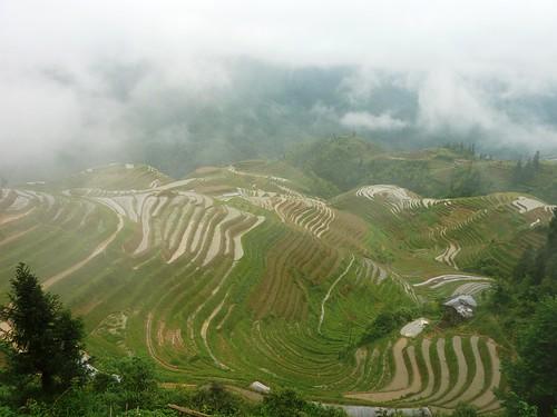 C-Guangxi-Pingan-Terrasse des 7 etoiles (45)