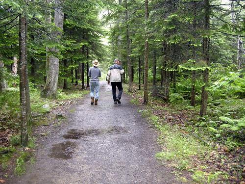 Bangor City Forest - Bangor, Maine