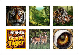 free Untamed Bengal Tiger slot game symbols
