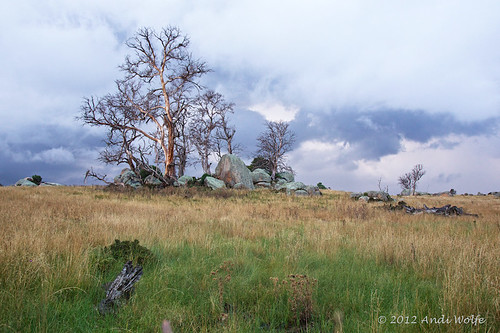 Australia landscape by andiwolfe