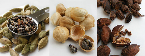 Vier soorten Cardemon