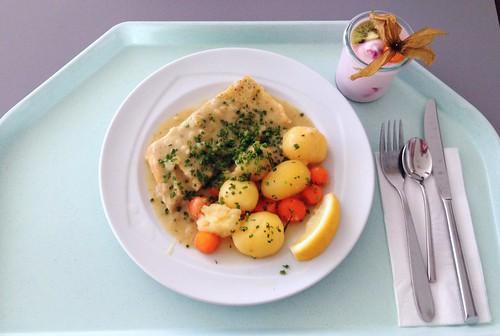 Barschfilet in Weißweinsauce / Perch filet in white wine sauce