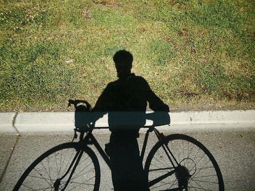 4 - Max D shadow