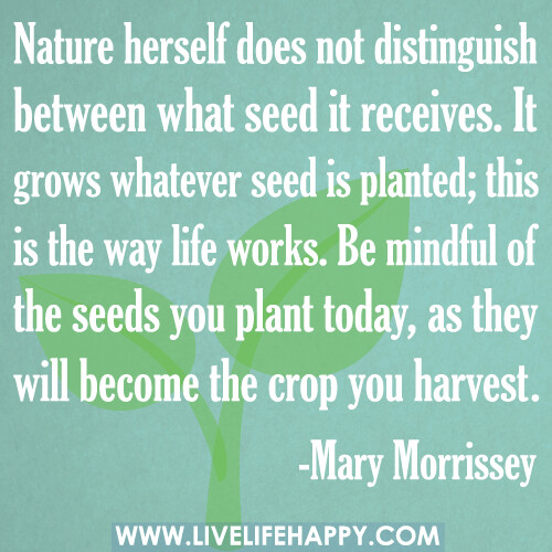 Nature herself does not distinguish between what seed it receives. It grows whatever seed is planted; this is the way life works. Be mindful of the seeds you plant today, as they will become the crop you harvest.