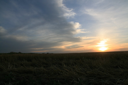 The sunset on our cut field