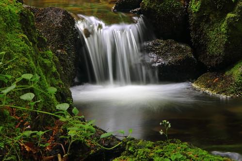 Cascada , Efecto seda #Photography  #Foto 78