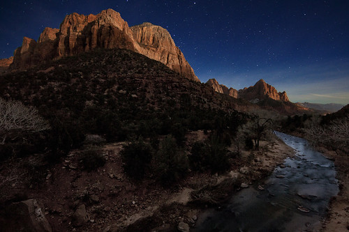 The Watchman Under the Moonlight