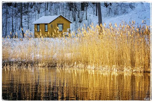 snow yellow landscape sweden textures archipelago djurö enbrabild