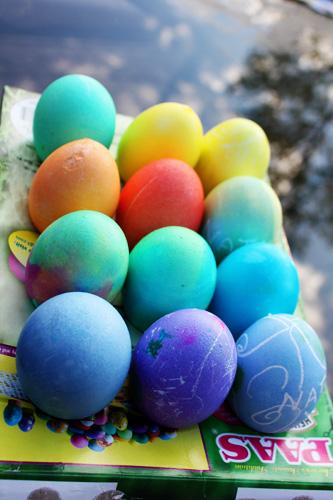 Nathans-eggs