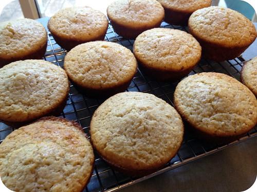 Oatbran Muffins