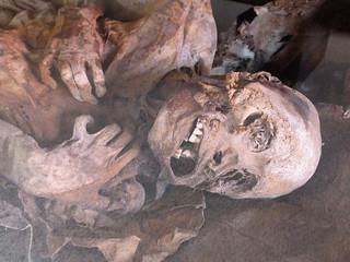 Momia Ona de El Museo de El Porvenir