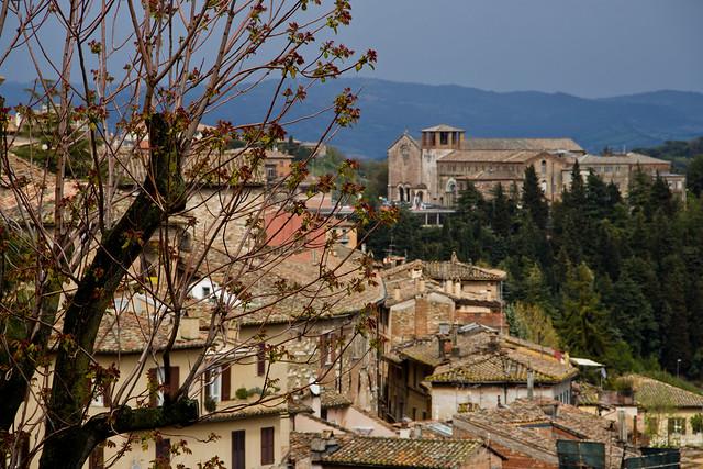 Perugia - Rooftop Textures