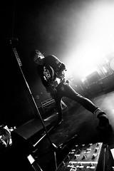 live concert brussels, love, ava, concert, tour, belgium, belgique, live, gig, bruxelles, ab, mainhall, anciennebelgique, tomdelonge, lve, davidkennedy, angelsairwaves, mattwachter, ilanrubin, iempire, brusselsbruxellesbelgium