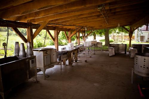Polyface Farm 2012-0140.jpg