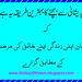 Islamic Quote in Urdu by The Rana 1