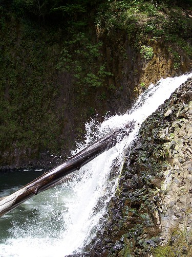 cliff oregon creek forest waterfall woods fishladder vernonia scappoose