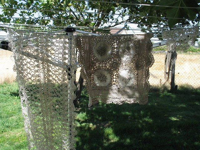 Doilies on the Clothes Line