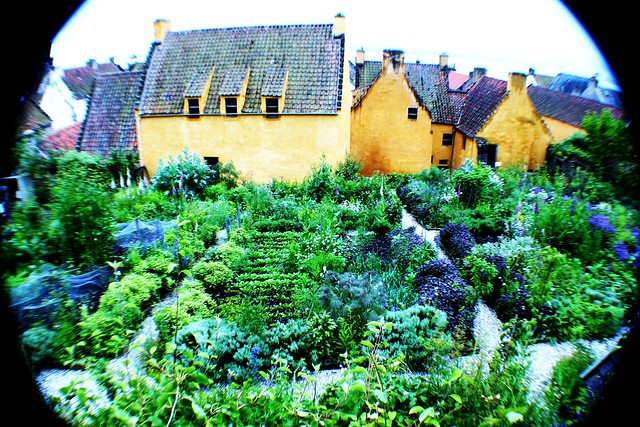 Gardens at Culross Palace