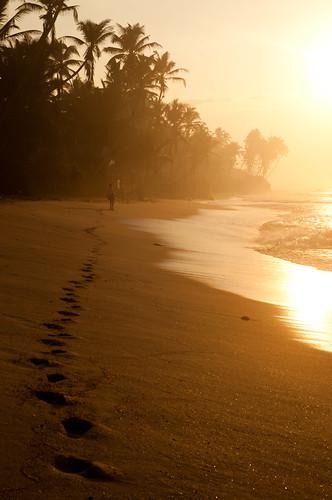 travel sun beach fishing sand asia surf fishermen adventure srilanka ceylon unawatuna stickfishermen thalpe srilanka886712