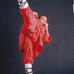 Mon, 07/11/2011 - 10:32 - Shaolin Kung Fu training in India