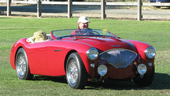 1956 Austin Healey 100 M 1