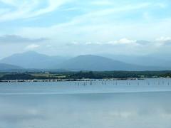 Marche le long de Foce de Fierascuti : zoom sur l'étang et ses pêcheries