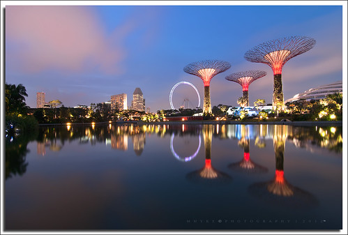 Gardens By The Bay - Supertrees, Singapore
