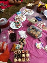 Live from our picnic by Rachel from Cupcakes Take the Cake