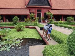courtyard, backyard, shrub, flower, garden, wall, roof, driveway, yard, estate, landscaping, walkway,