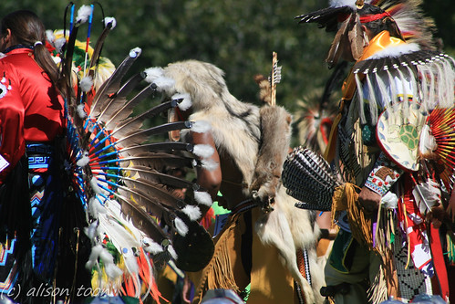 newyork festival back costume wolf view skin indian traditional feathers longisland nativeamerican arrow tribe powwow shinnecock scabbard