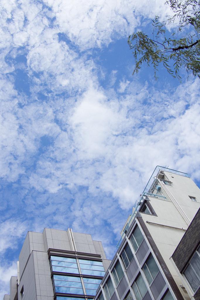 青空 2012/08/16 OMD60307