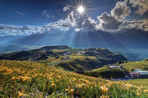 flowers sunset sun mountain flower clouds lily sundown farm rays 小瑞士 日落 花蓮 金針花 sunstar 耶穌光 金針山 黃昏 六十石山 黑卡 六十石 金針花海 富里 斜射光 雲隙光 日芒