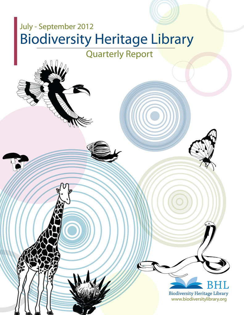 BHL Quarterly Report