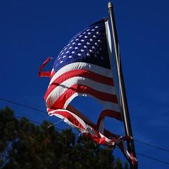 Sad Flag