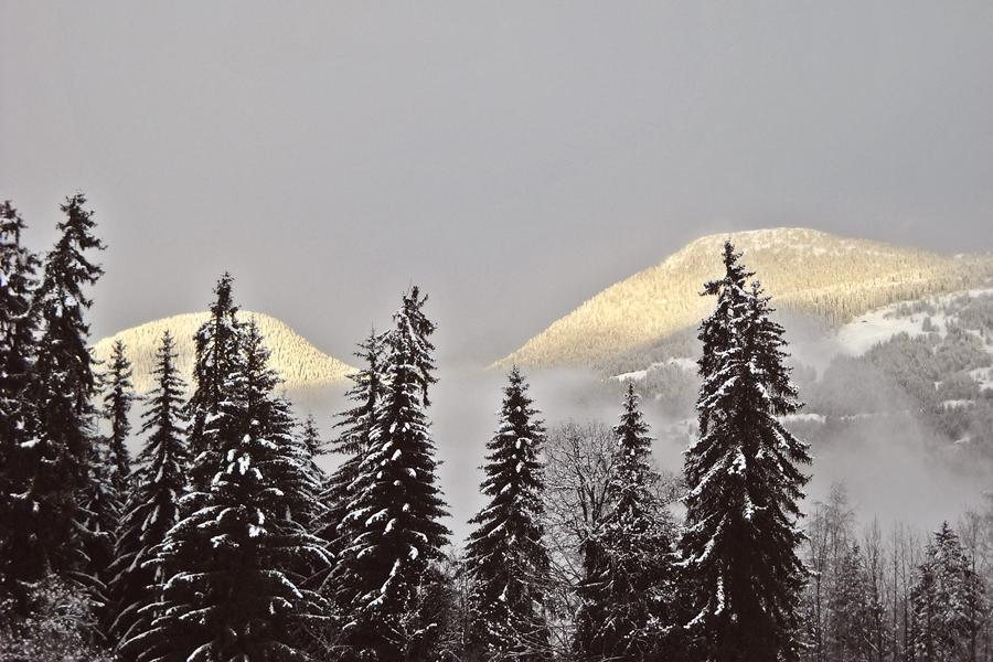 Au Pays du Mont-Blanc (10)
