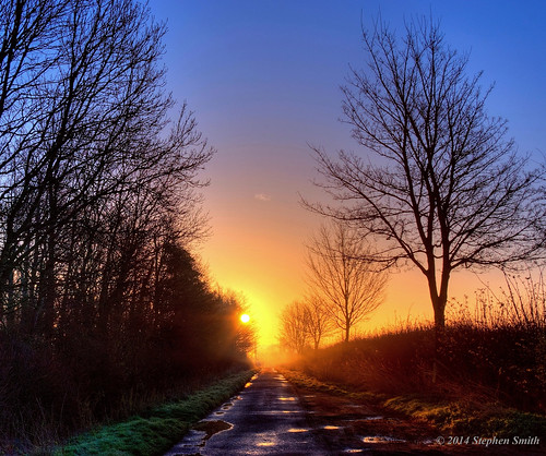 uk trees england mist nature sunrise landscape dawn march spring nikon scenery northamptonshire countrylane hdr 2014 grangeroad d80 geddington
