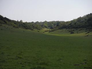 Bramshott Bottom